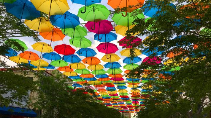 , เทศกาล และกิจกรรมที่นำร่มมาเป็นส่วนประกอบ